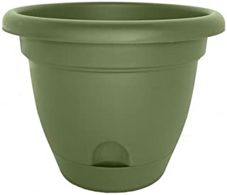 """product image for Lucca Round Pot Planter (Set of 6) Color: Living Green, Size: 8.75"""" H x 10"""" W x 10"""" D"""