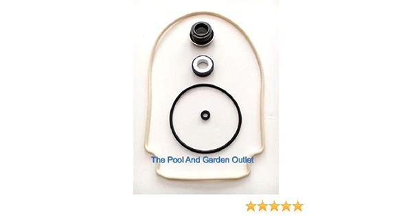 Amazon Com Parts Whisperflo Swimming Pool Pump Leak Repair Kit W Gasket Seal O Ring Garden Outdoor