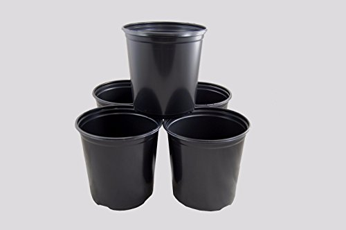 Flower Pots in Bulk 1 Gallon Plastic Nursery Garden Plant Flower Pots, Small Flower Pots, Flower Pots indoor Decorative (100) by Flower Pots