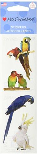 Mrs Grossman Stickers-Exotic Birds - Mrs Grossmans Sticker Sheet