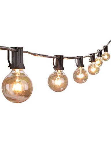 Globe String Lights with Clear Bulbs,Backyard Patio Lights,Hanging Indoor/Outdoor String Lights for Bistro Pergola Deckyard Tents Market Decor ... (25 ft, White-Multicolor)