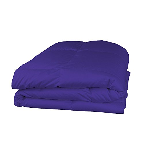 Relaxare Short King 400TC 100% Egyptian Cotton Purple Solid 1PCs Comforter Solid- Ultra Soft Breathable Premium Fabric by Relaxare