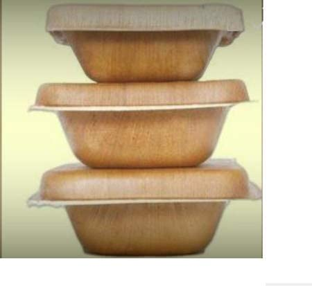 Ensaladera con tapa, hoja de palma - 500 ml, 20 piezas, desechable ...