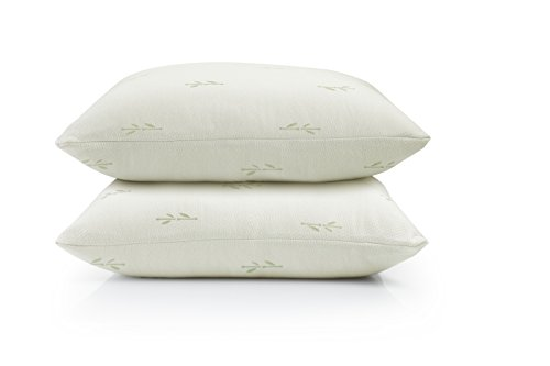 2-Pack Eco-Friendly Bamboo Zippered Pillow Protectors. Na...