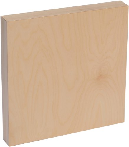Acrylic Easel Panel - American Easel 10 Inch by 10 Inch by 1 5/8 Inch Deep Cradled Painting Panel