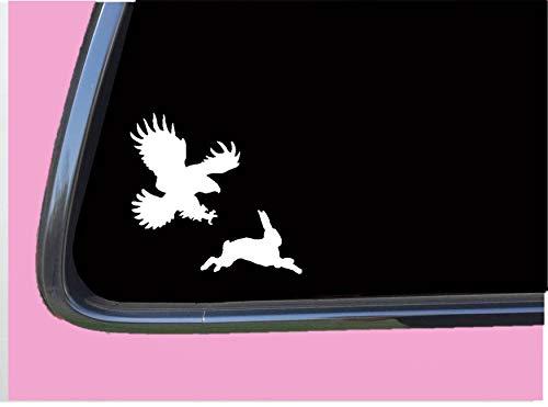 Bird catching prey TP 624 Sticker 6