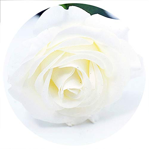 Baby hunter station 11pcs/lot Rose Artificial Flowers Silk Flowers Floral Latex Real Touch Rose Wedding Bouquet Home Decor Party Flowers,White