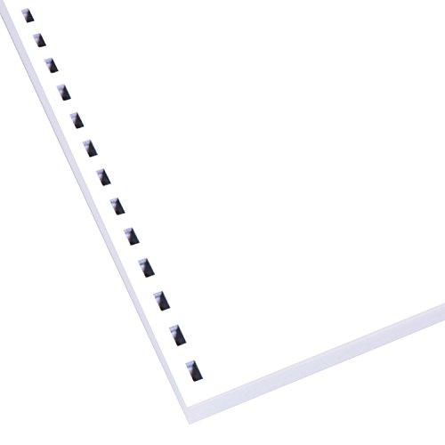 Swingline GBC ZipBind Pre-Punched Paper, 19-Hole, 24 lb., 96 Bright, 100 Sheets (26006)