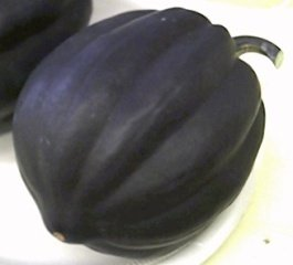 - Squash - Table Queen Acorn Non GMO Heirloom Vegetable 30 Seeds by Sow No GMO