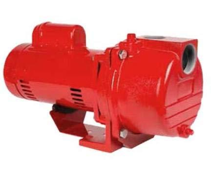 (Red Lion Self-Priming Sprinkler Pump, RL-SPRK100, 1 Hp)