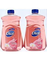 (2 Pk. Dial Himalayan Pink Salt & Water Lily Hand Soap Refill 52 Fl. Oz (104 Fl. Oz Total))