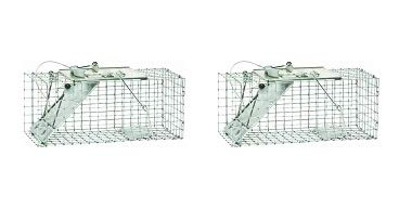 Havahart 1083 Easy Set One-Door Cage Trap for Squirrels and Small Rabbits (2-(Pack)) ()