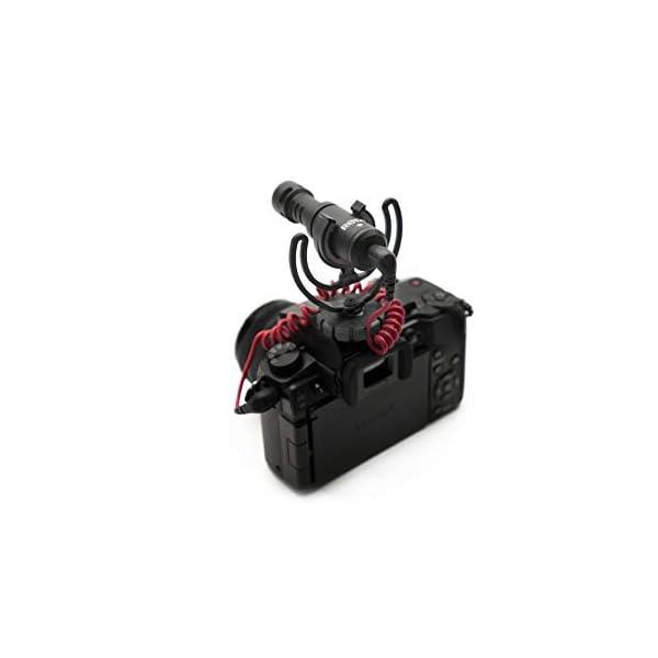 Rode VideoMicro - Microfono Direzionale Compatto per fotocamere DSLR, videocamere e registratori audio portatili, Jack 3,5 mm, Colori assortiti, 1 pezzo 4 spesavip