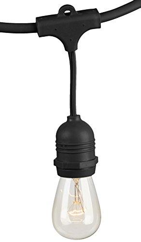 AmazonBasics Weatherproof Outdoor Patio String Lights S14 Bulb, Black, 48-Foot by AmazonBasics (Image #3)
