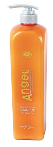 Dancoly Angel Professional Marine Depth Spa Shampoo - Dry Neutral Hair 500mL