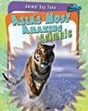 Asia's Most Amazing Animals, Anita Ganeri, 141093084X