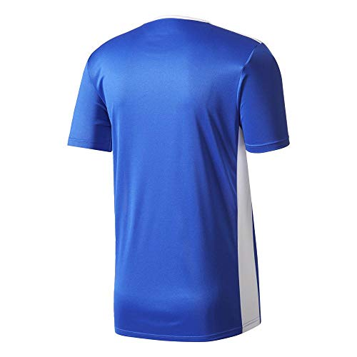 18 white Blue Uomo Entrada T shirt Blu Adidas bold BpR5qn