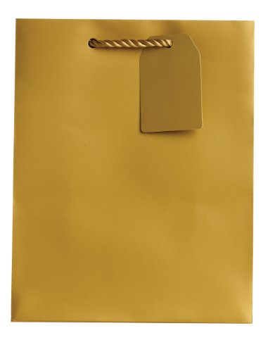 Jillson Roberts Bulk Medium Gift Bags Available in 19 Colors, Gold Matte, 120-Count by Jillson Roberts