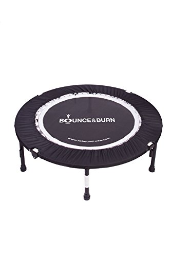 Bounce & Burn II - Mini Trampoline – Best seller - Affordable & FUN way to lose weight and get FIT! Includes DVD & FREE 3 MONTHS VIDEO MEMBERSHIP by Bounce