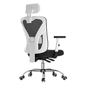 Hbada Chaise de Bureau Ergonomique, Fauteuil Pivotant de Dossier Inclinable à 135°, Siège avec Support Lombaire, Appui…