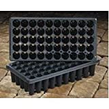 TO Plastics Star Plug Tray, 50 Star Short Plug Tray, 2.35 Inches Deep (50 Trays)