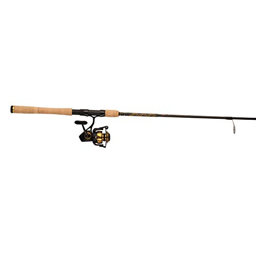 Reel Graphite Spinfisher - Penn, Spinfisher VI Saltwater Combo, 6.2:1 Gear Ratio, 6 Bearings, 7' Length 1pc, 6-12 lb Line Rating, Ambidextrous