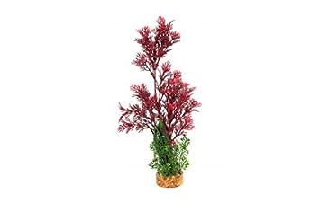 Tropical 35 5cm Upright Plant Reptile Vivarium Decoration Terrarium
