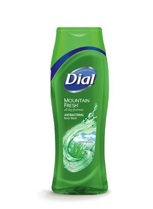 dial body wash mountain fresh - 4