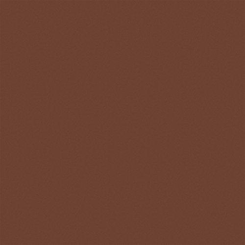 Rust-Oleum 255552 Alkyd Enamel Flat Red Primer Rust-Preventative Maintenance Paint