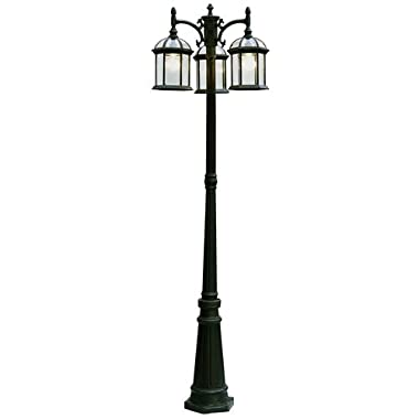 Trans Globe Lighting 4189 BK Outdoor Wentworth 79  Pole Light, Black