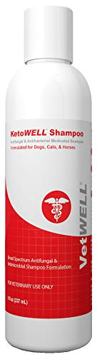 KetoWELL Ketoconazole & Chlorhexidine Shampoo for Dogs & Cats - Antifungal, Antibacterial & Antiseptic Medicated Dog Shampoo for Hot Spots, Ringworm, Yeast, Fungal Infections, Acne & Pyoderma - 8 oz