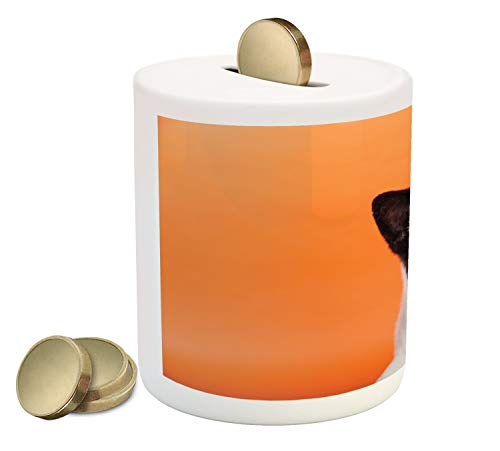 Ambesonne Dog Lover Piggy Bank, Pet Photo of Adorable Domestic Akita Breed on Tangerine Tones, Printed Ceramic Coin Bank Money Box for Cash Saving, Orange Charcoal Grey Off White
