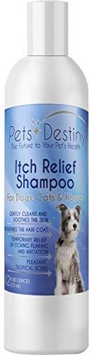 Pets Destiny Anti Itch Relief Shampoo 1% Pramoxine HCl for Dogs Cats Horses Soap Free Colloidal Oatmeal Omega-6 Deep Cleaning Shampoo for Soothing, Moisturizing & Nourishing - 12 Fl Oz (355 mL)