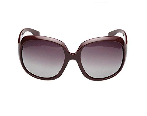 sophia loren eyeglass frames - 1