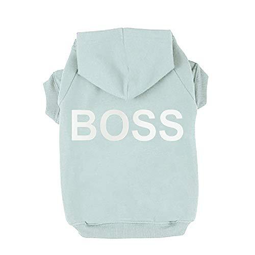 Pet Clothes,Pet Dog Hooded Warm Sweatshirt Fleece Squirrel Harness Leash Small Pet Vest Suit Outdoor Jogging Boss Printed