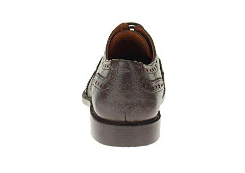 Luciano Natazzi Mens Cuir Pleine Moderne Wingtip Oxford Chaussures À Lacets Robe Sl304 Brun Foncé