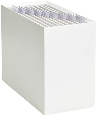 The Container Store Edge Desktop Hanging File Box