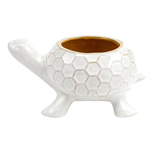 Turtle Pot (Hallmark Home Turtle Planter)