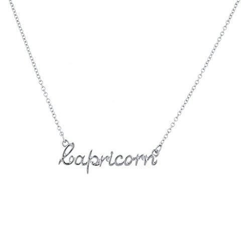 Script Name Earrings - Lux Accessories Silvertone Capricorn Astrological Script Nameplate Necklace