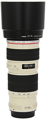 Canon EF 70-200mm f/4L USM Telephoto Zoom Lens for Canon SLR Cameras (Best Zoom Lens For Sports)