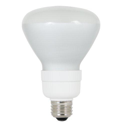 15w Br30 Cfl (Feit Electric Tuff Kote 15 Watt, BR30 CFL Reflector)