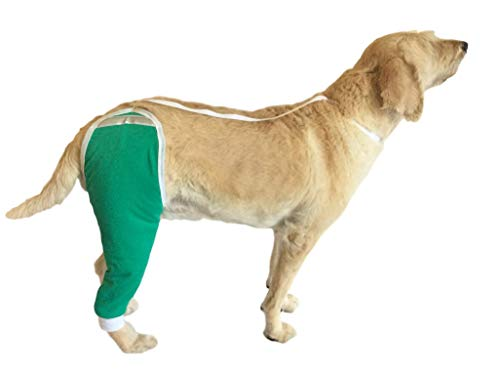 After Surgery Wear Hip and Thigh Wound Protective Sleeve for Dogs. Dog Recovery Sleeve. Recommended by Vets Worldwide (Large, Teal Green)