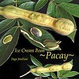 Cutdek ~PACAY~ ICE Cream Bean Inga feuilleei Fruit Tree Monkey Tamarind larg Potd Plant