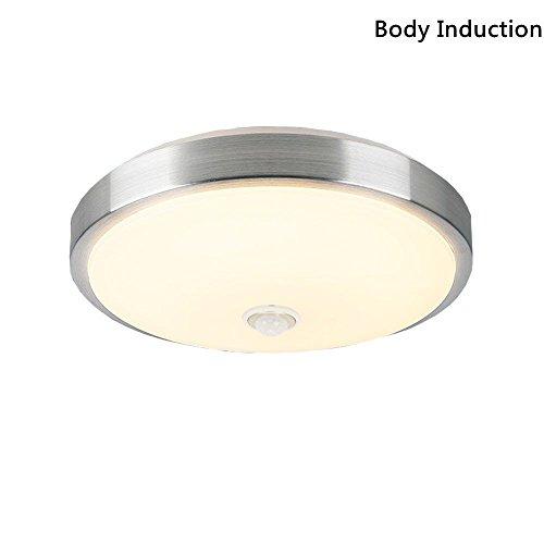 Indoor Led Ceiling Light Fixtures