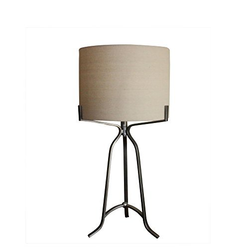 Martin Richard W-1546DS Traditional Fangio Lighting's #1546DS 27.5 inch Modern Metal Table Lamp In Dark Silverdark Silver (Metal Table Lamp Richard)