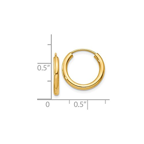 14K Yellow Gold Polished 12mm Round Endless Hoop Earrings