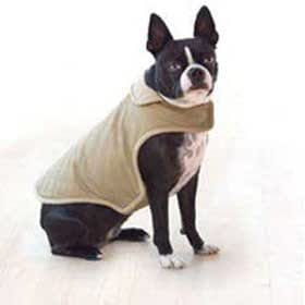 Dog Gone Smart Bed DGSWJCL04 Cotton Mid-Weight Quilted Dog Jacket, Large, Khaki