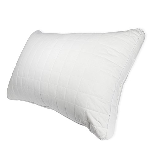 Century Home Signature Collection Gusseted Silk Pillow, Standard,