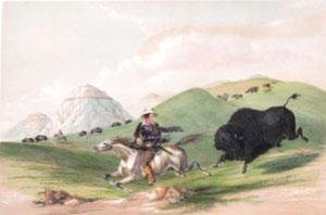 No. 12 - Buffalo Hunt, Chasing Back