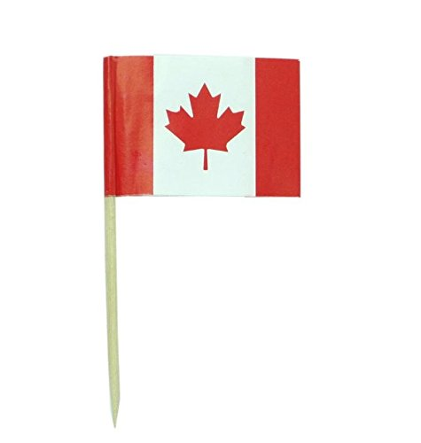 Canada | Canadian Flag Toothpicks | National Flags Food Picks for Bento Box Lunch Box(140 Count) (Canadian Canada)